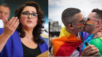 """Photo of Eurokomisařka pro rovnost H. Dalliová vytáhla do boje proti normální rodině: """"Ten gender vám vnutíme, ať si o tom myslíte cokoli!"""""""