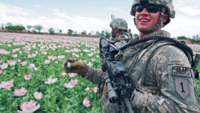 Photo of Ruské ministerstvo zahraničí: Zpravodajské služby USA se podílejí v Afghánistánu na obchodování s drogami. Každý Afghánec v Kábulu vám to řekne, je to veřejným tajemstvím